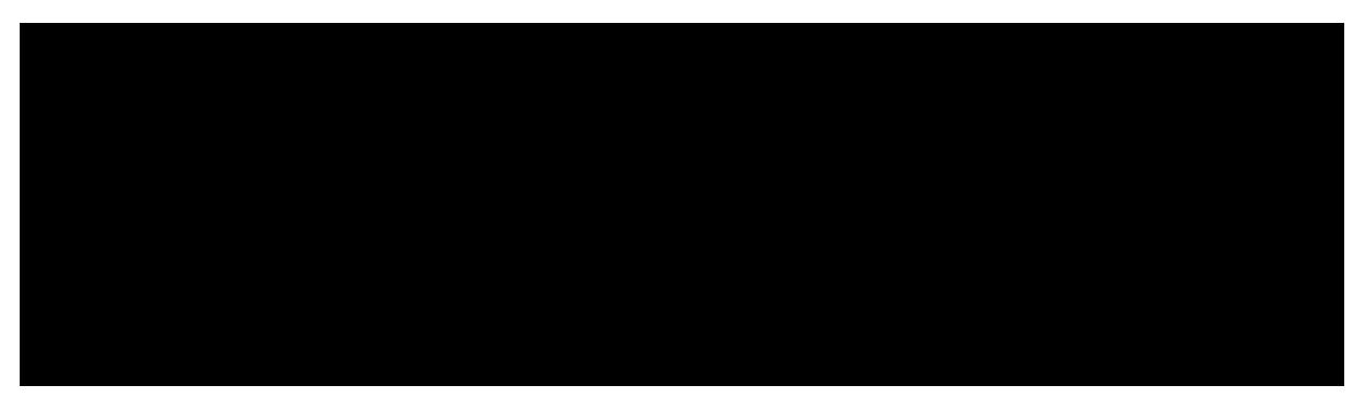 Synopel